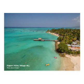 Carte Postale Point Tobago de pigeon
