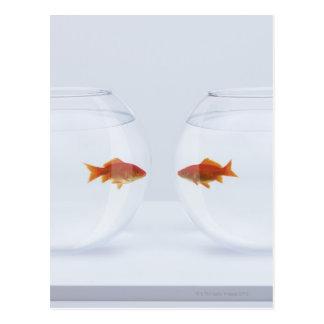 Carte Postale Poisson rouge dans des bocaux à poissons distincts