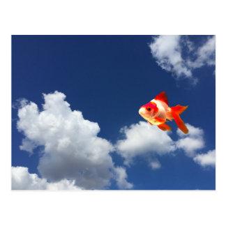 Carte Postale poisson rouge de vol