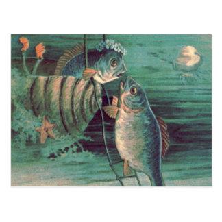 Carte Postale Poissons Romeo et étoiles de mer de méduses de