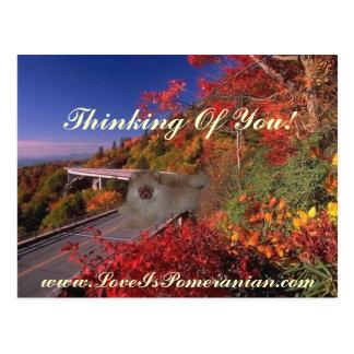 Carte Postale Pomeranian a appelé Zeus scène colorée d'automne