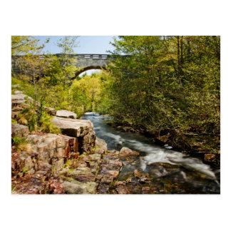 Carte Postale Pont au-dessus de rivière