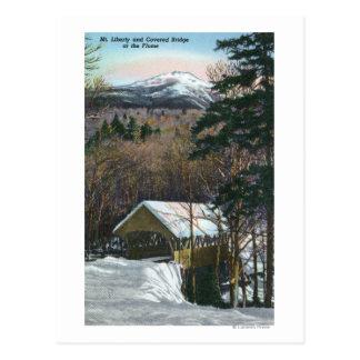Carte Postale Pont couvert à la canalisation en hiver