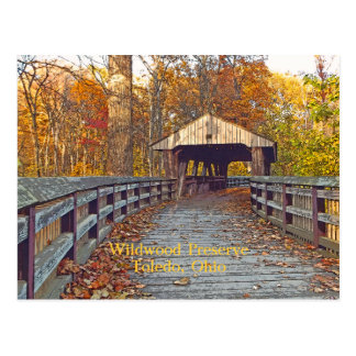 """carte postale, """"pont couvert à la conserve de"""