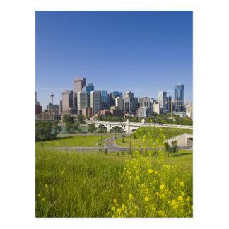 Carte Postale Pont en St de centre et Calgary du centre,