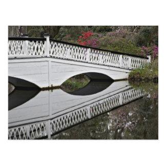 Carte Postale Pont réfléchissant sur l'étang, magnolia