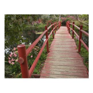 Carte Postale Pont rouge au-dessus d'étang, plantation de