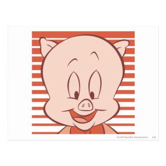 Carte Postale Porc gros 23 expressifs
