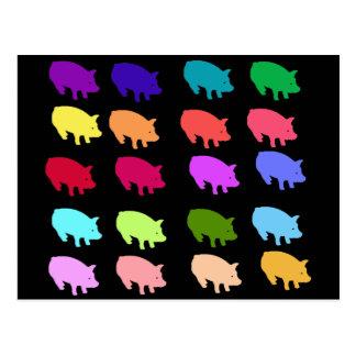 Carte Postale Porcs d'arc-en-ciel