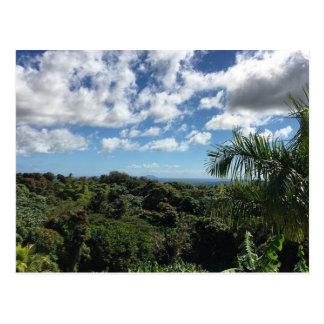 Carte Postale Porto Rico (Humacao et île de Vieques)