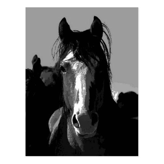 Carte postale portrait de cheval noir et blanc - Cheval a imprimer noir et blanc ...