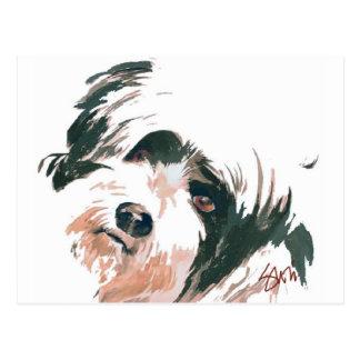 Carte Postale Portrait de Terrier tibétain
