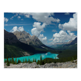 Carte Postale Postcard Lake Peyto in Banff National Park, Canada