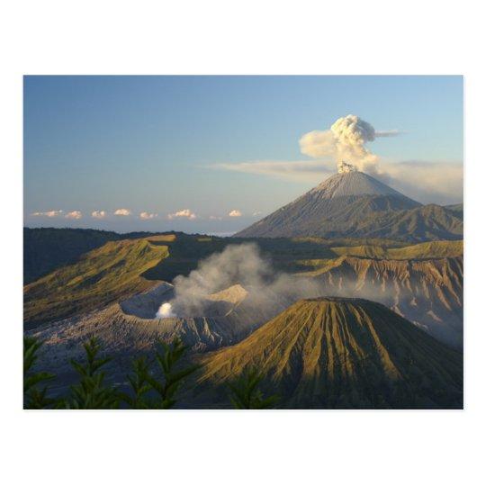 Carte Postale Postcard Mount Bromo, Java, Indonesia