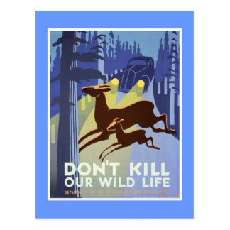 Carte Postale Poster vintage de conservation de faune
