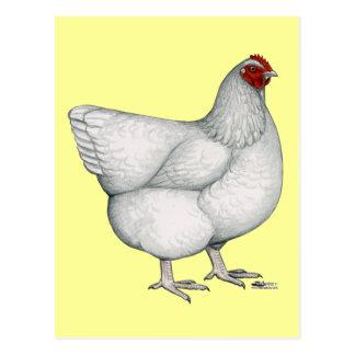 Carte Postale Poule de blanc d'Orpington