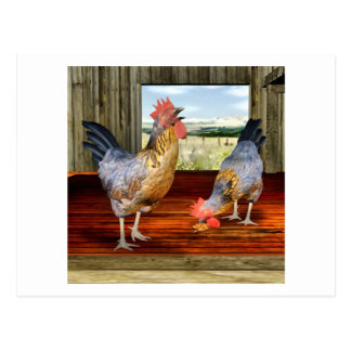 Carte Postale Poulets dans la grange