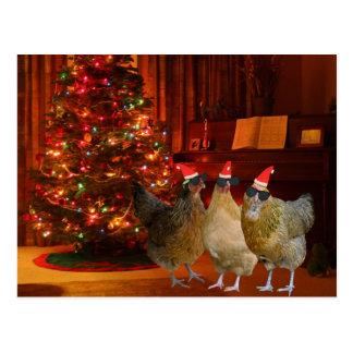 Carte Postale Poulets frais de Noël