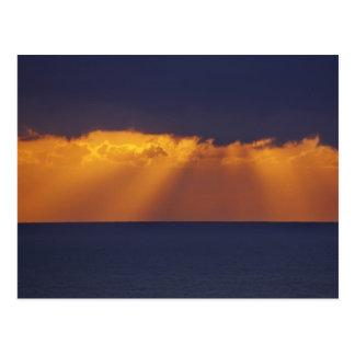 Carte Postale Première lumière au-dessus de mer de Tasman,