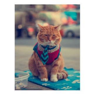 Carte Postale Prier se reposant de chat beige de cravate