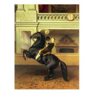 Carte Postale Prince héritier Rudolph de l'Autriche