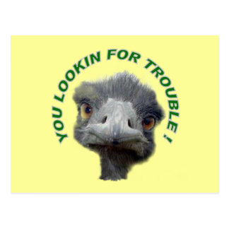Carte Postale Problème d'autruche