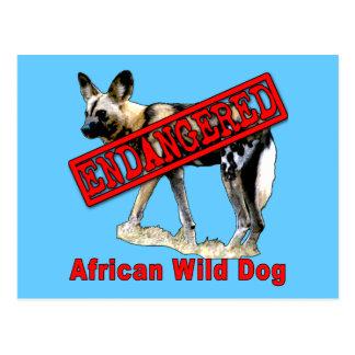 Carte Postale Produits animaux mis en danger africains de chien