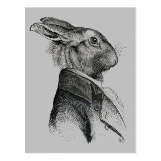 Carte Postale Profil de portrait de lapin