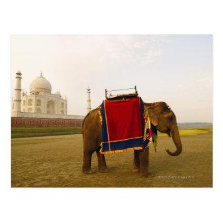 Carte Postale Profil latéral d'un éléphant, le Taj Mahal, Inde