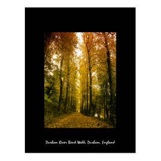 Carte Postale Promenade d'automne