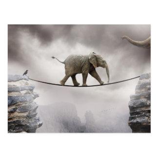 Carte Postale Promenades d'éléphant de bébé Tightrope