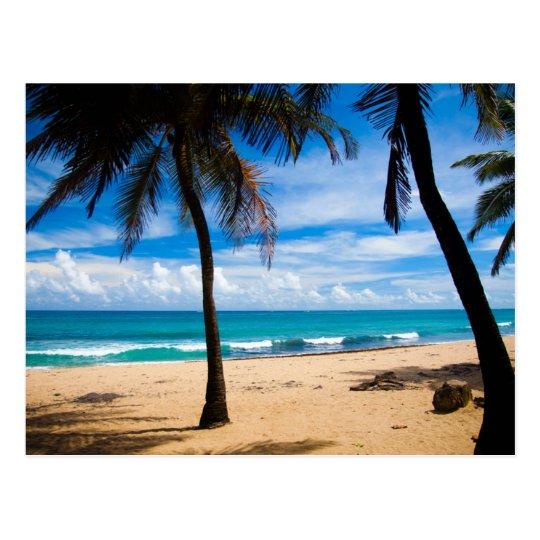 Carte Postale Puerto Rico - Condado Beach