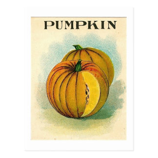 carte postale pumpking vintage de paquet de graine
