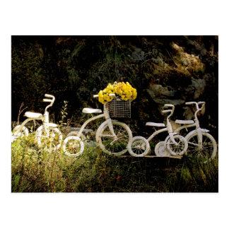 Carte Postale Quatre tricycles blancs
