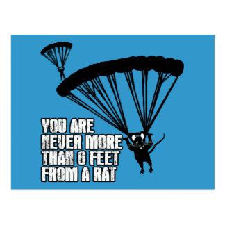 Carte Postale Rat drôle
