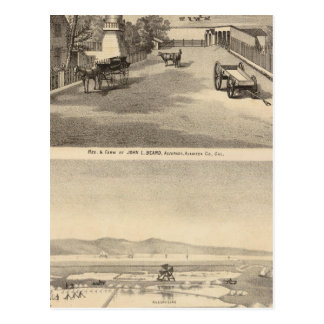 Carte Postale Recherche de barbe, travaux de sel d'Alvarado