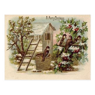 Carte Postale Récolte d'échelle de neige de houx d'oiseau de