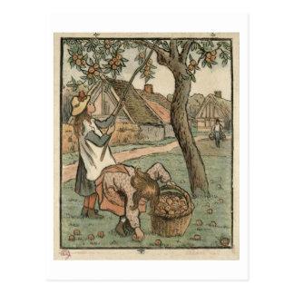 """Carte Postale Recueillant des pommes, de """"DES de Travaux mâche"""","""
