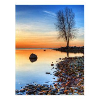 Carte Postale Réflexions de matin