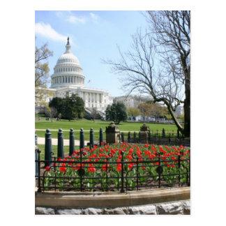 Carte Postale Ressort de bâtiment de capitol des USA
