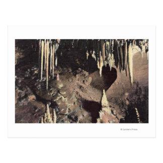 Carte Postale Ressorts de Manitou, le Colorado - la chambre