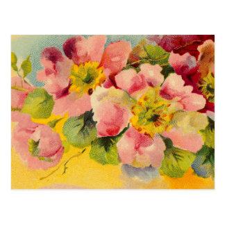 Carte Postale Rétros primevères florales vintages roses