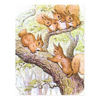 Carte Postale Réunion d'écureuil
