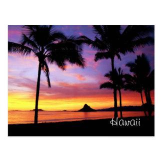 Carte postale rêveuse d'Hawaï