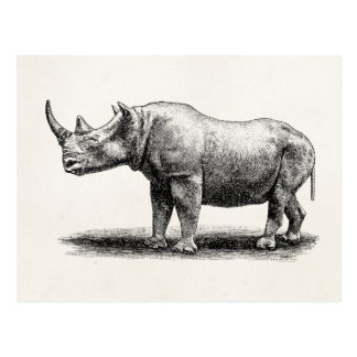 Carte Postale Rhinocéros vintages de rhinocéros d'illustration