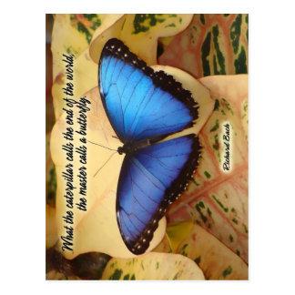 Carte Postale Richard Bach-The Caterpillar