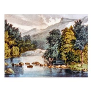 Carte Postale Rivière de raquette--Carte postale d'Adirondacks