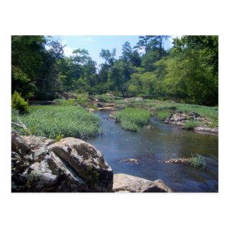 Carte Postale Rivière d'Eno, la Caroline du Nord