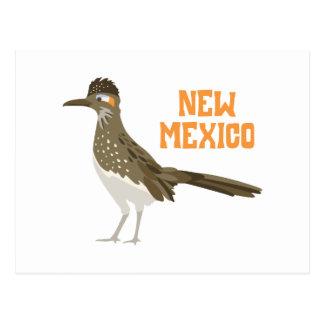 Carte Postale Roadrunner du Nouveau Mexique