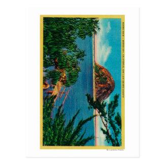 Carte Postale Roche de Morro dans le comté de San Luis_obispo